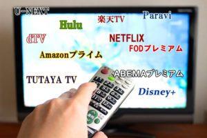 どれに登録しよう?洋画・海外ドラマ好きにおすすめの動画配信サイト